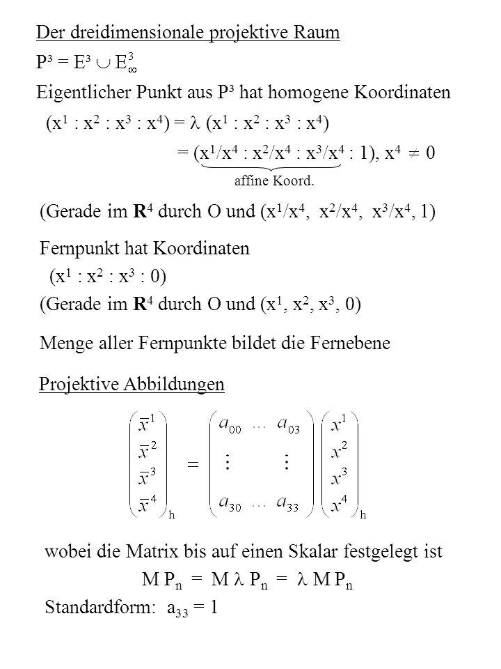 Der dreidimensionale projektive Raum P³ = E³ 