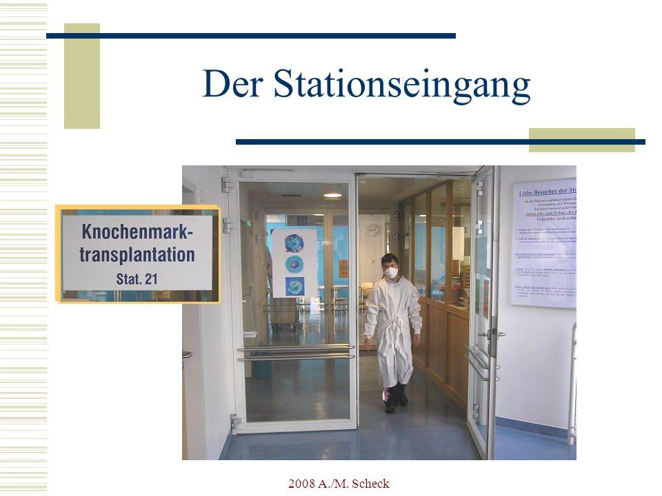 Der Stationseingang 2008 A./M. Scheck