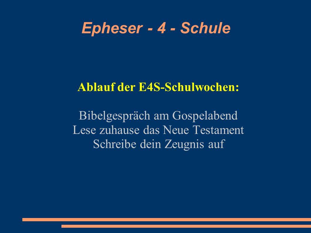 Ablauf der E4S-Schulwochen: