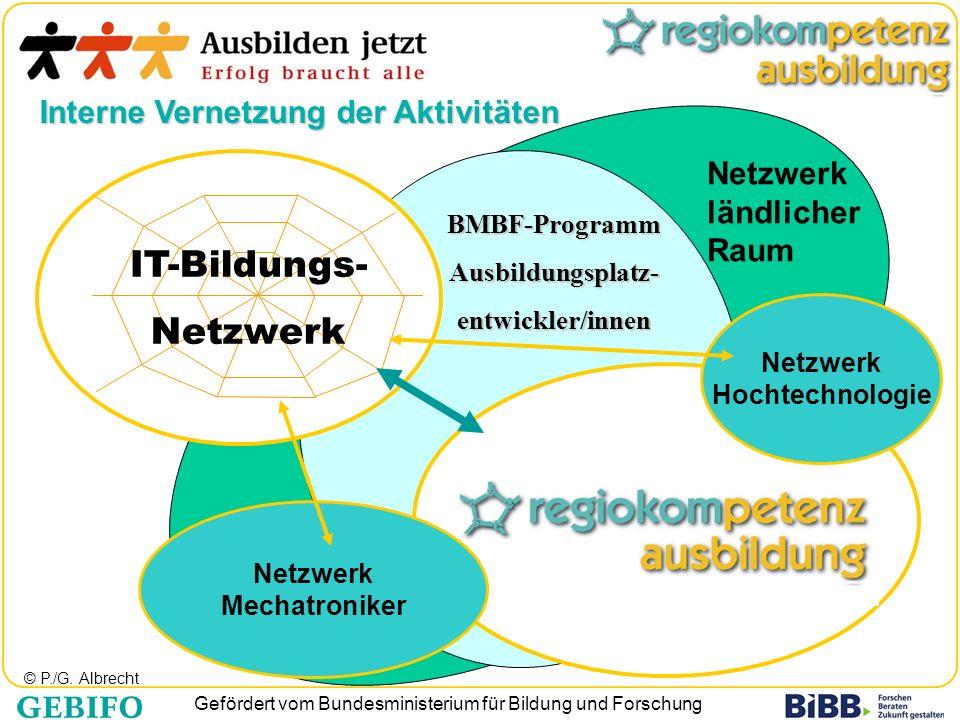IT-Bildungs- Netzwerk