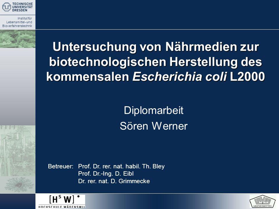 Diplomarbeit Sören Werner