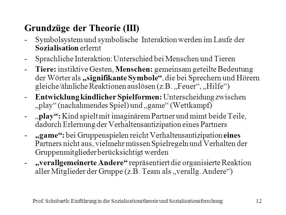 Grundzüge der Theorie (III)