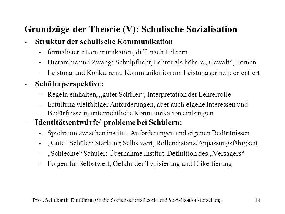 Grundzüge der Theorie (V): Schulische Sozialisation