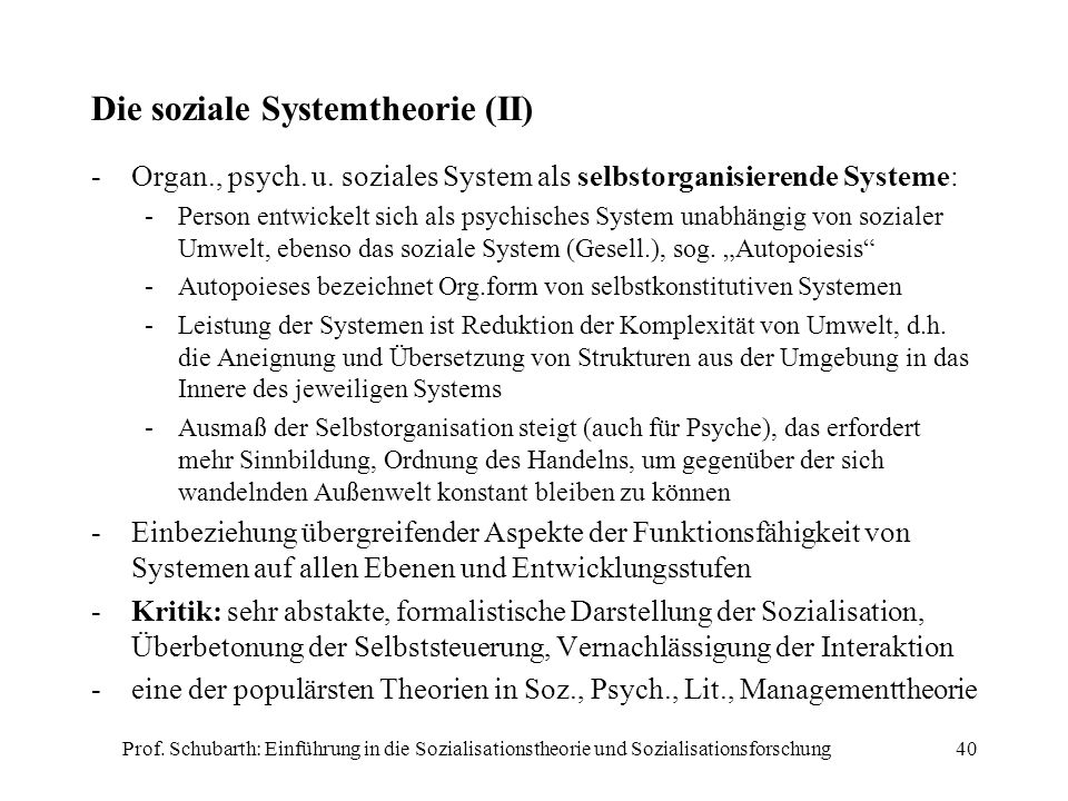 Die soziale Systemtheorie (II)