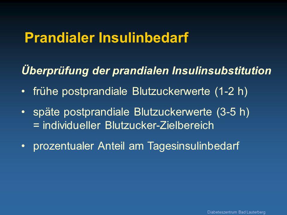 Prandialer Insulinbedarf