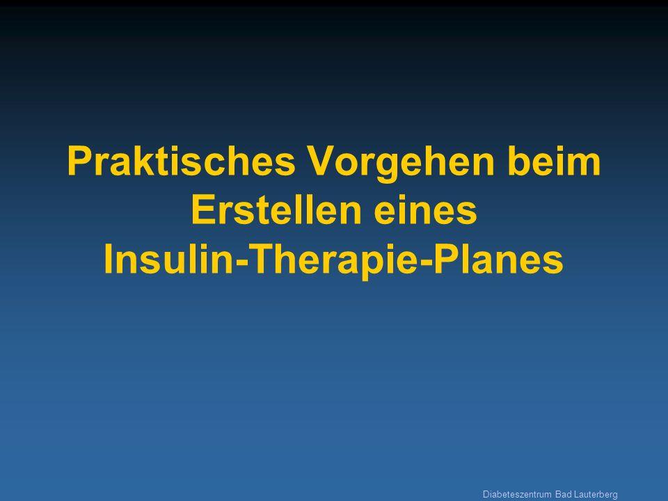 Praktisches Vorgehen beim Erstellen eines Insulin-Therapie-Planes