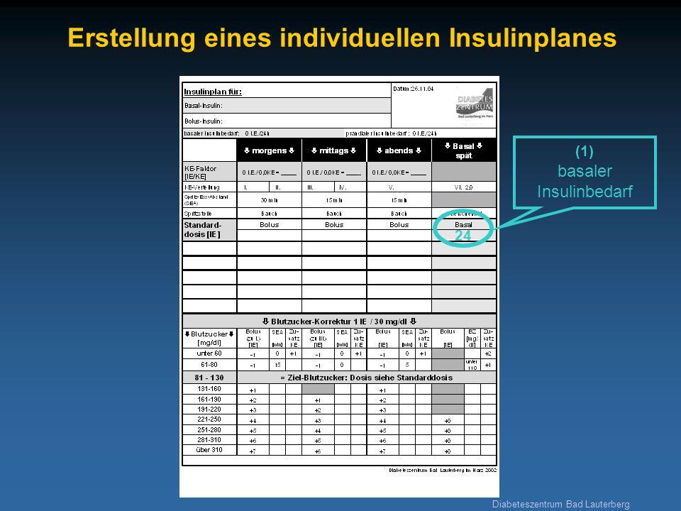 Erstellung eines individuellen Insulinplanes