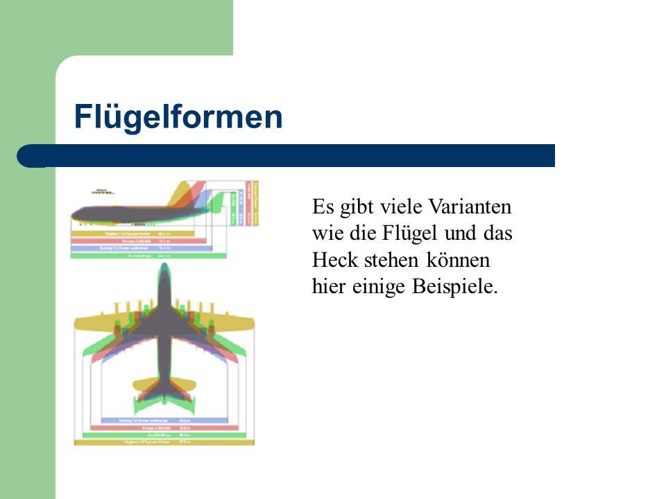 Flügelformen Es gibt viele Varianten wie die Flügel und das Heck stehen können hier einige Beispiele.