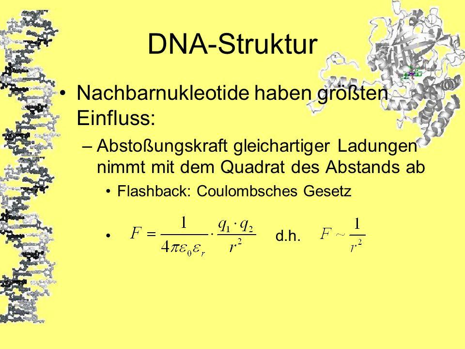 DNA-Struktur Nachbarnukleotide haben größten Einfluss: