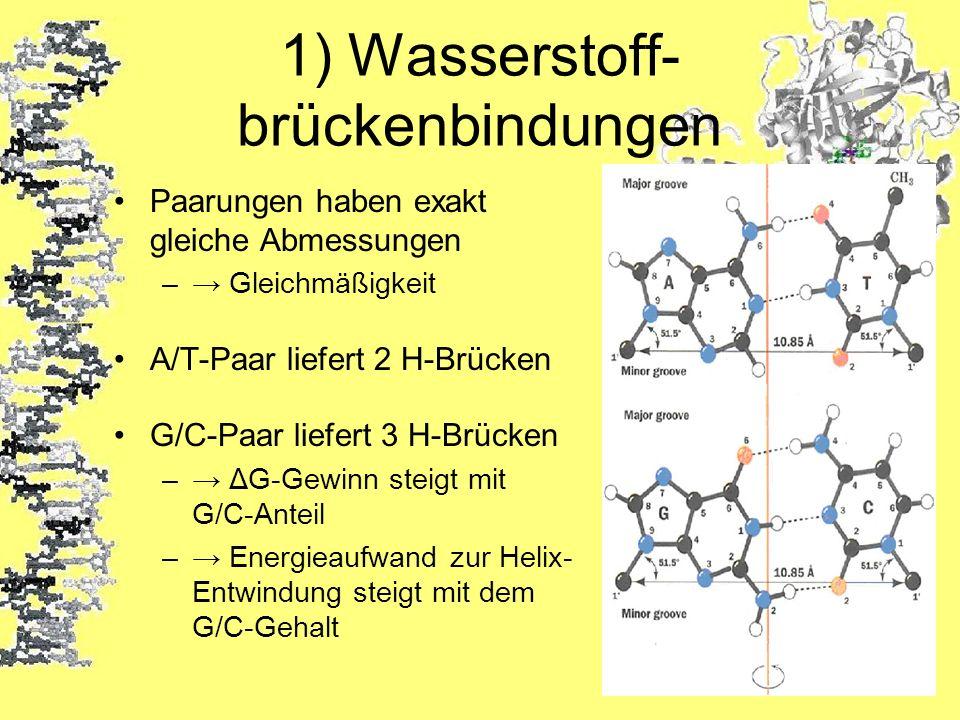 1) Wasserstoff-brückenbindungen