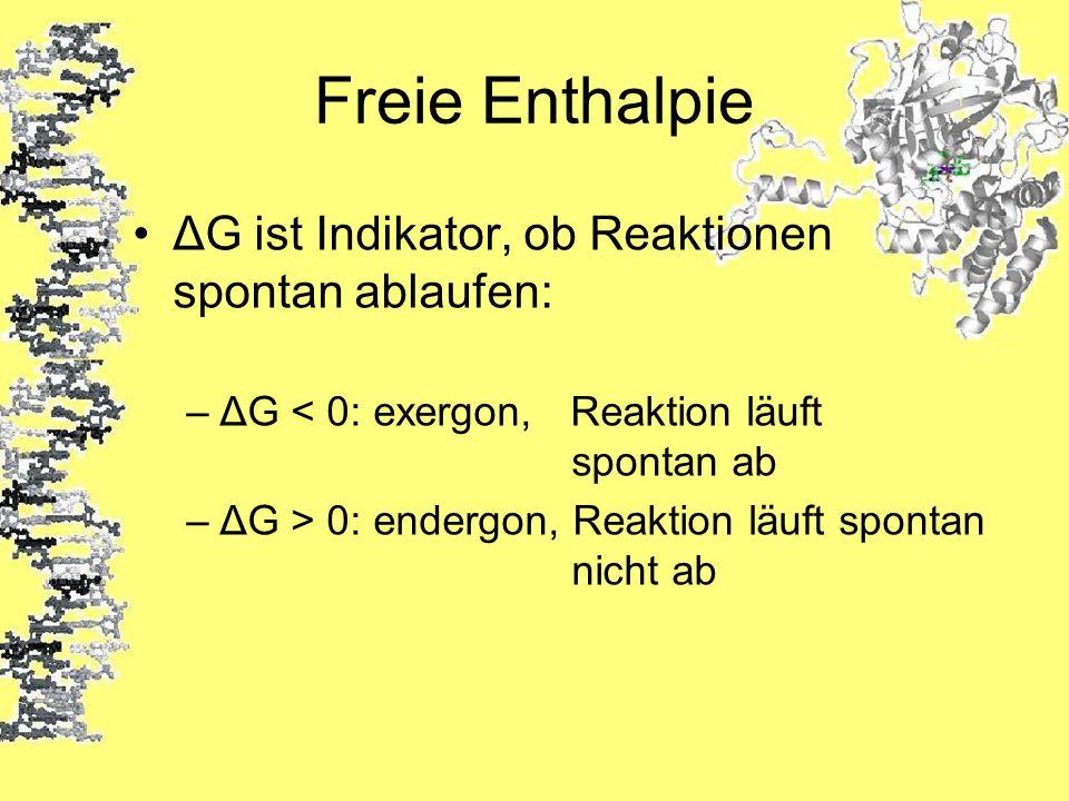 Freie Enthalpie ΔG ist Indikator, ob Reaktionen spontan ablaufen: