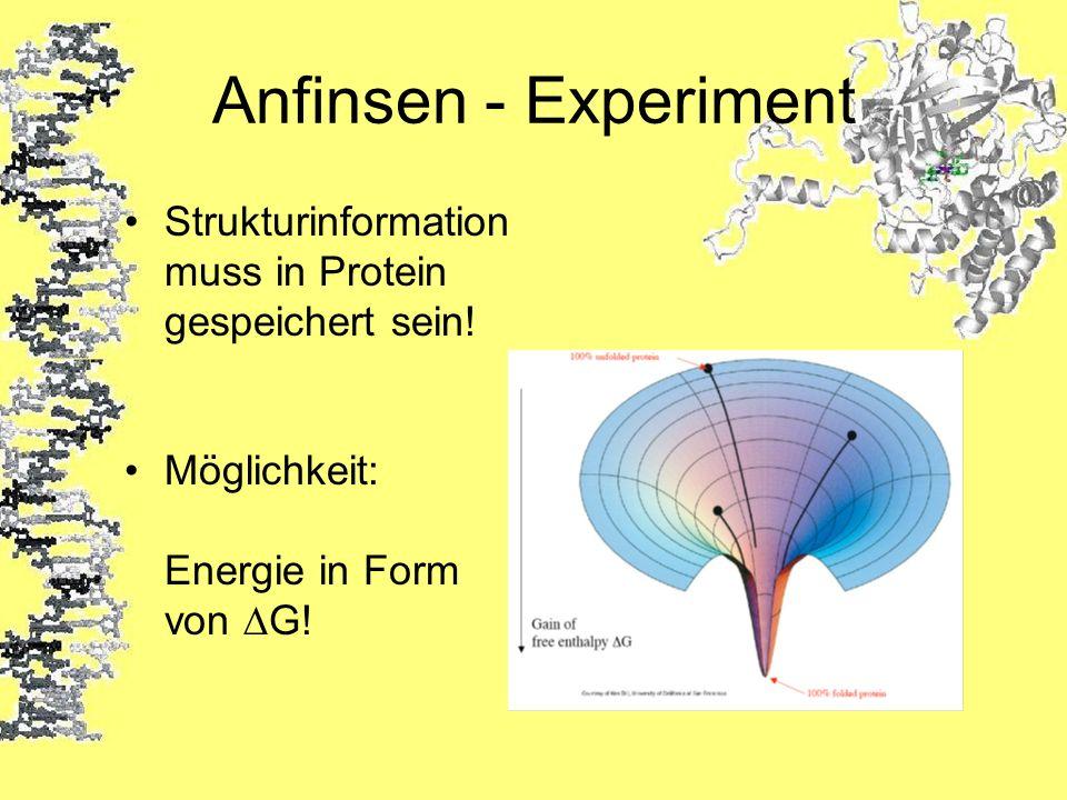 Anfinsen - ExperimentStrukturinformation muss in Protein gespeichert sein.