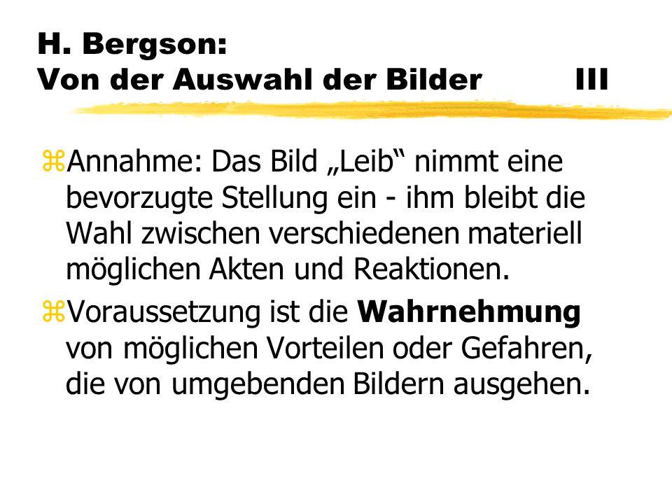 H. Bergson: Von der Auswahl der Bilder III