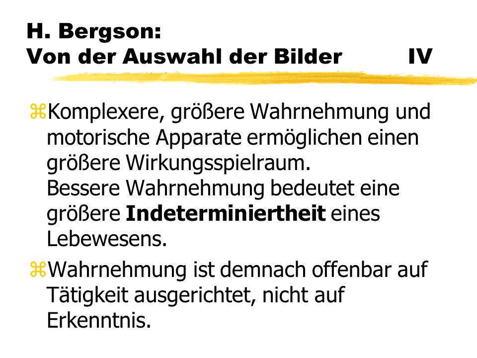 H. Bergson: Von der Auswahl der Bilder IV