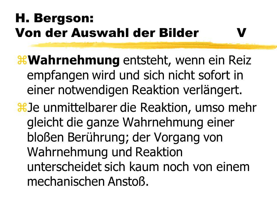 H. Bergson: Von der Auswahl der Bilder V