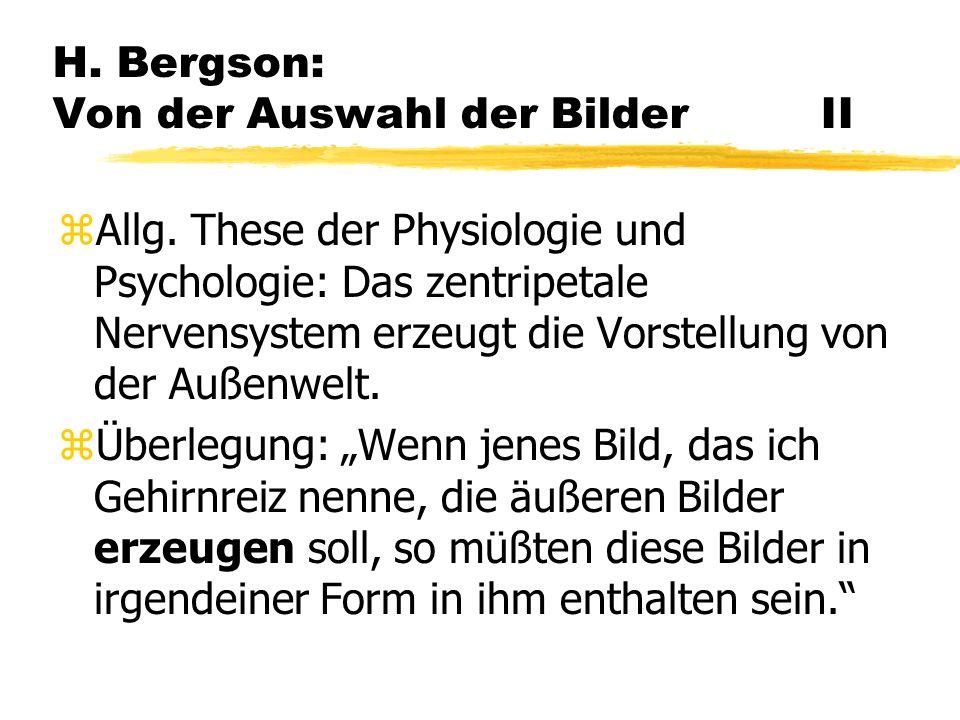 H. Bergson: Von der Auswahl der Bilder II