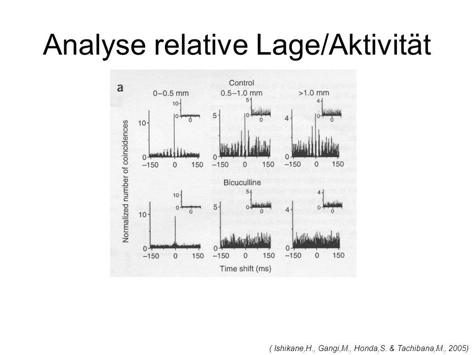 Analyse relative Lage/Aktivität