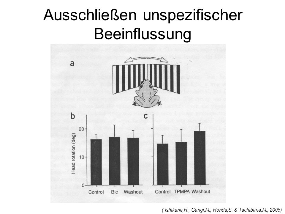 Ausschließen unspezifischer Beeinflussung