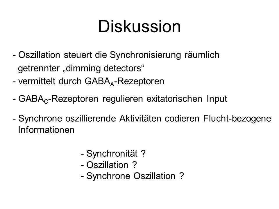 Diskussion - Oszillation steuert die Synchronisierung räumlich