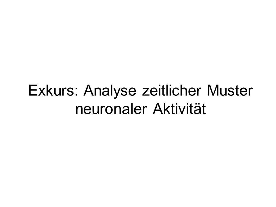 Exkurs: Analyse zeitlicher Muster neuronaler Aktivität