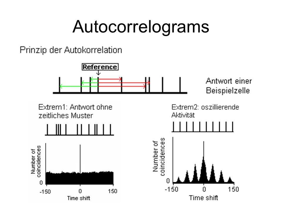 Autocorrelograms