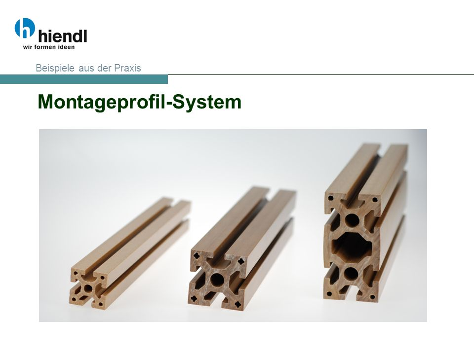 Montageprofil-System