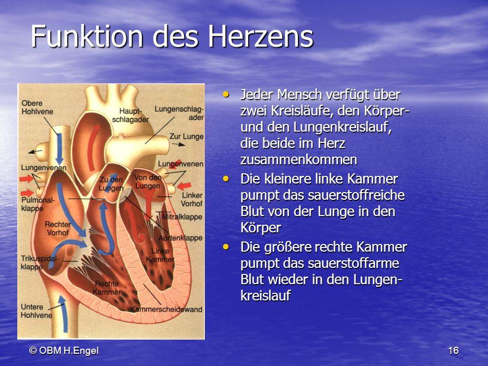 Funktion des Herzens Jeder Mensch verfügt über zwei Kreisläufe, den Körper- und den Lungenkreislauf, die beide im Herz zusammenkommen.