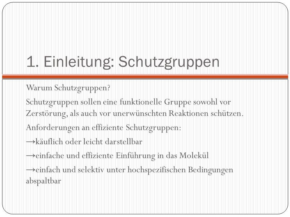 1. Einleitung: Schutzgruppen