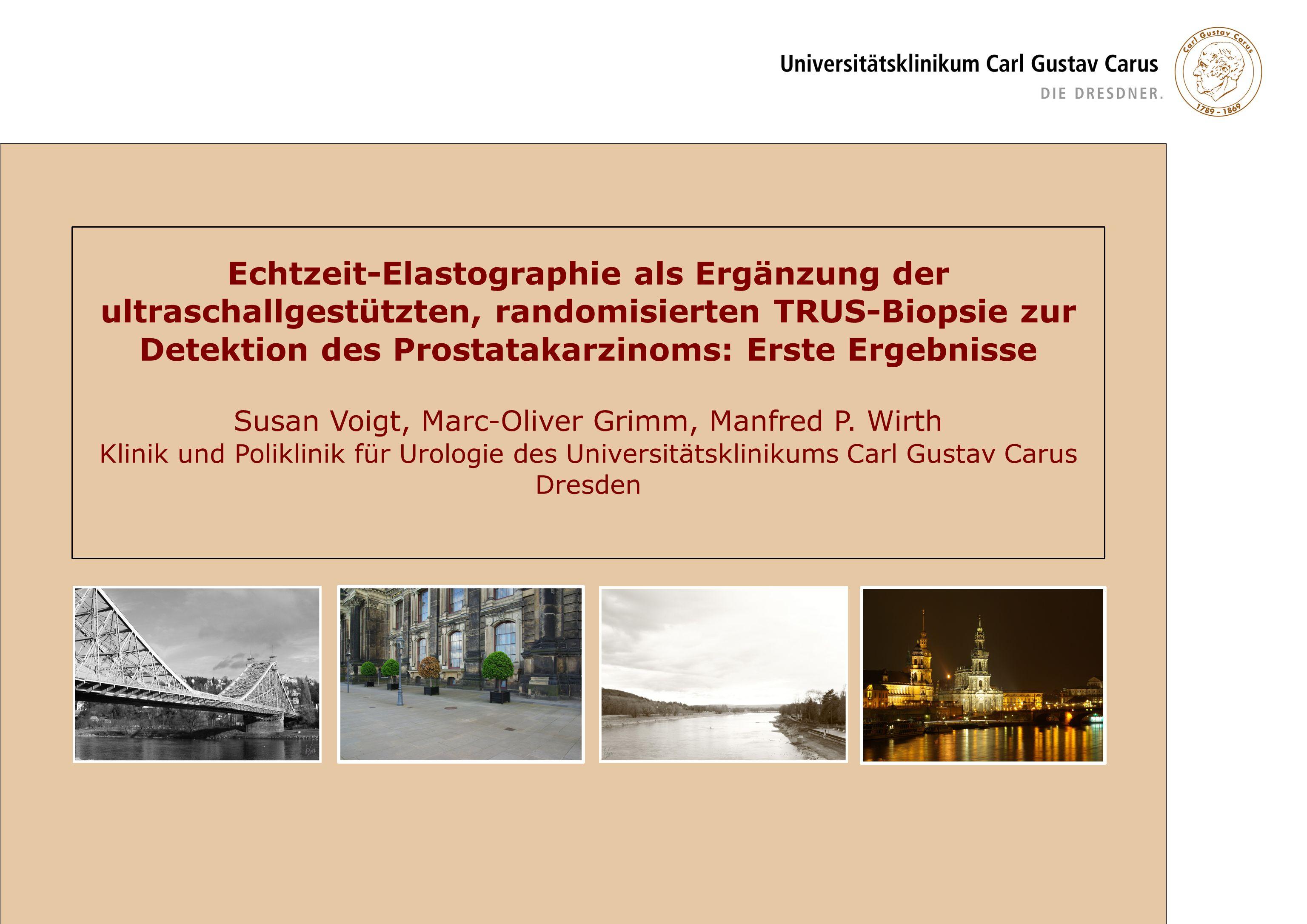 Susan Voigt, Marc-Oliver Grimm, Manfred P. Wirth