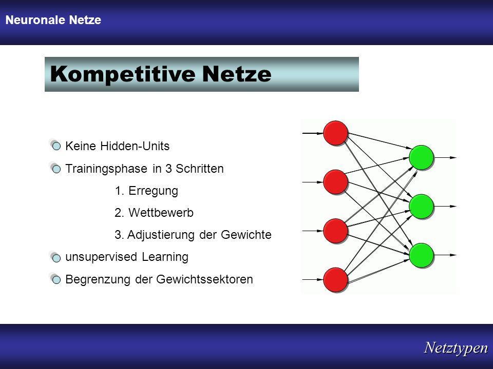 Kompetitive Netze Netztypen Neuronale Netze Keine Hidden-Units