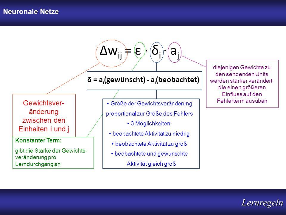 Δwij = ε · δi · aj Lernregeln δ = ai(gewünscht) - ai(beobachtet)