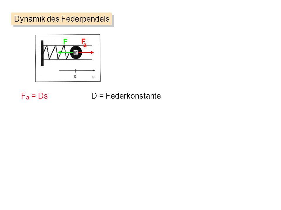Dynamik des Federpendels