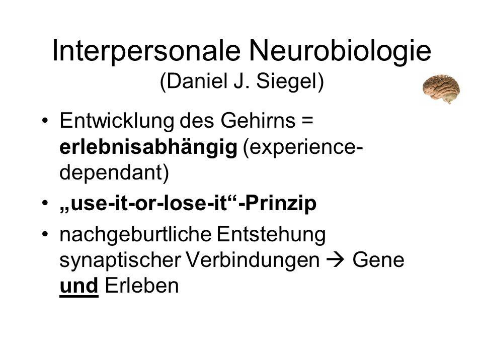 Interpersonale Neurobiologie (Daniel J. Siegel)