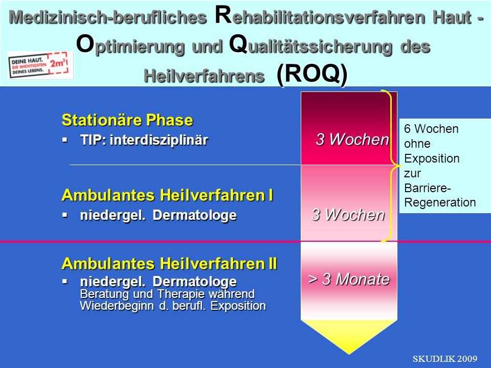 Medizinisch-berufliches Rehabilitationsverfahren Haut - Optimierung und Qualitätssicherung des Heilverfahrens (ROQ)