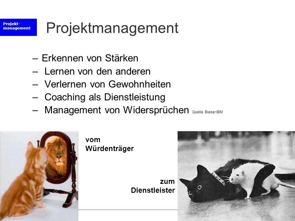 Projektmanagement Erkennen von Stärken Lernen von den anderen