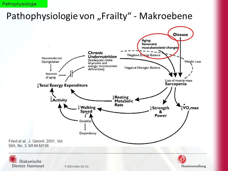 """Pathophysiologie von """"Frailty - Makroebene"""