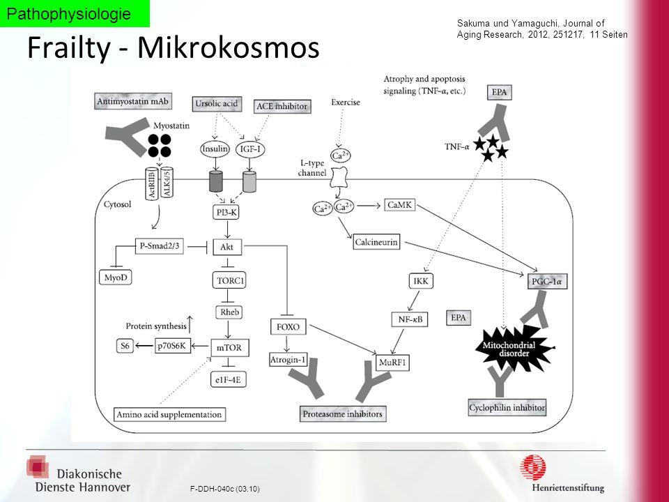 Frailty - Mikrokosmos Pathophysiologie