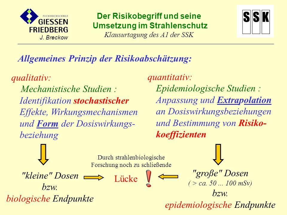 ! Allgemeines Prinzip der Risikoabschätzung: qualitativ: quantitativ: