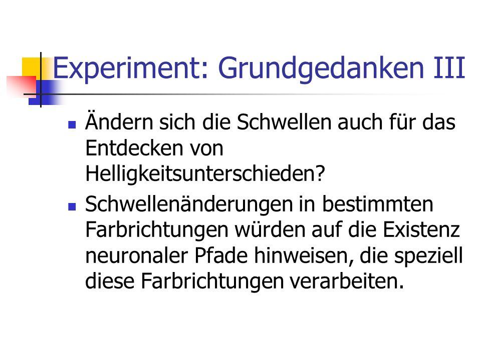 Experiment: Grundgedanken III