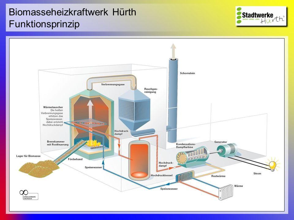 Biomasseheizkraftwerk Hürth Funktionsprinzip