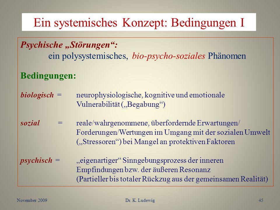 Ein systemisches Konzept: Bedingungen I