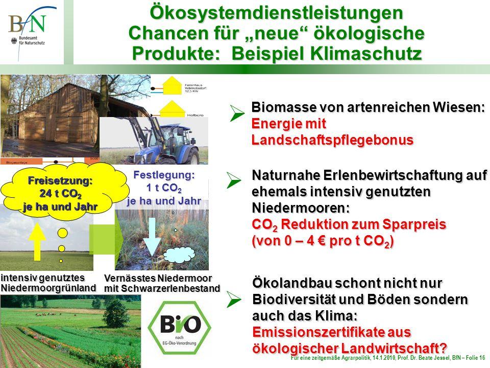 """Ökosystemdienstleistungen Chancen für """"neue ökologische Produkte: Beispiel Klimaschutz"""