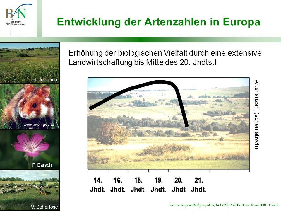 Entwicklung der Artenzahlen in Europa