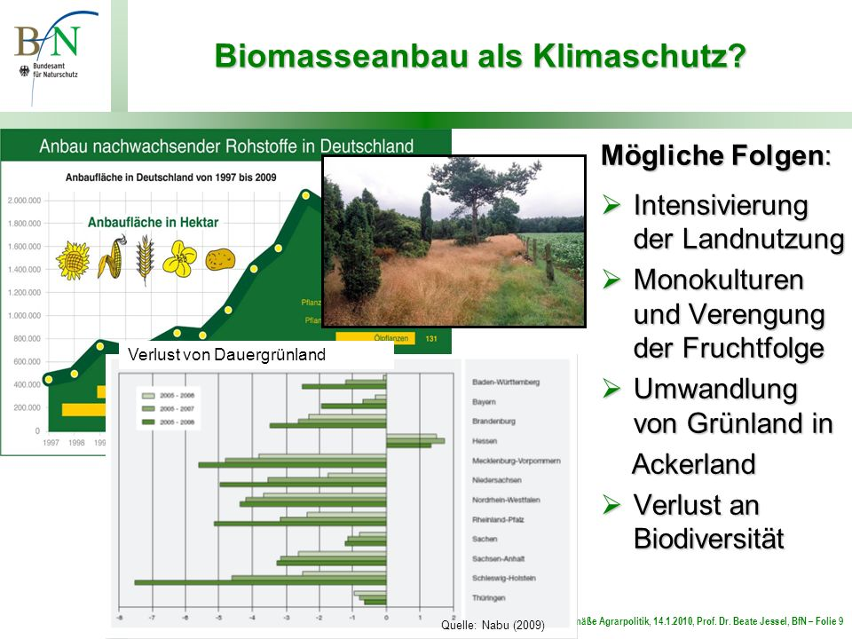Biomasseanbau als Klimaschutz
