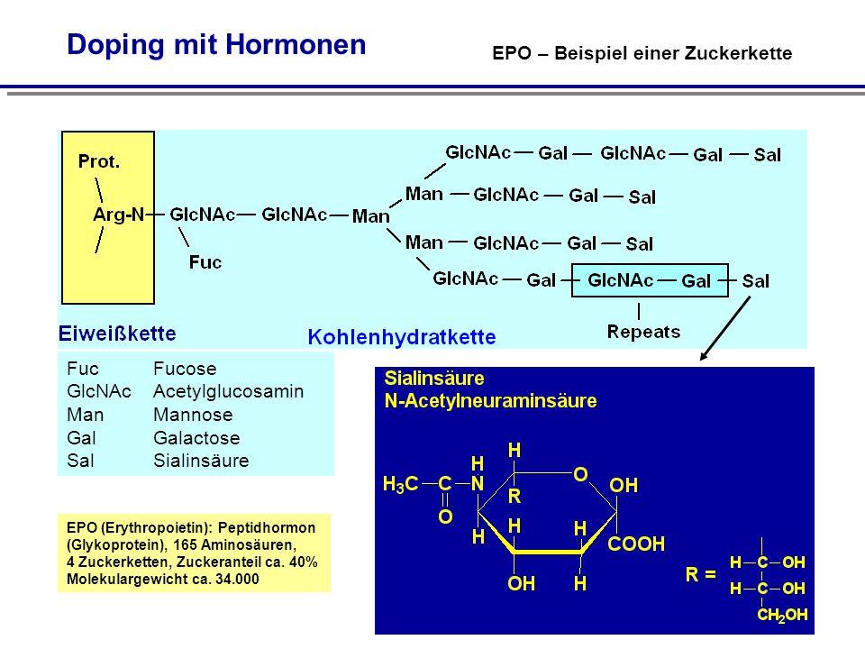 Doping mit Hormonen EPO – Beispiel einer Zuckerkette