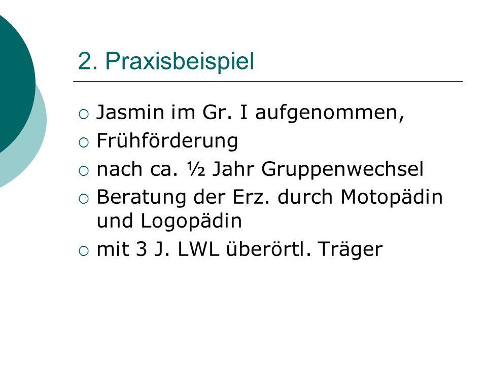 2. Praxisbeispiel Jasmin im Gr. I aufgenommen, Frühförderung