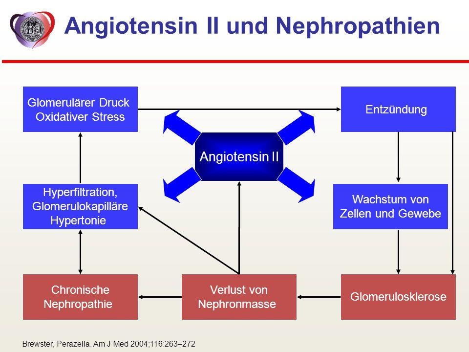 Angiotensin II und Nephropathien