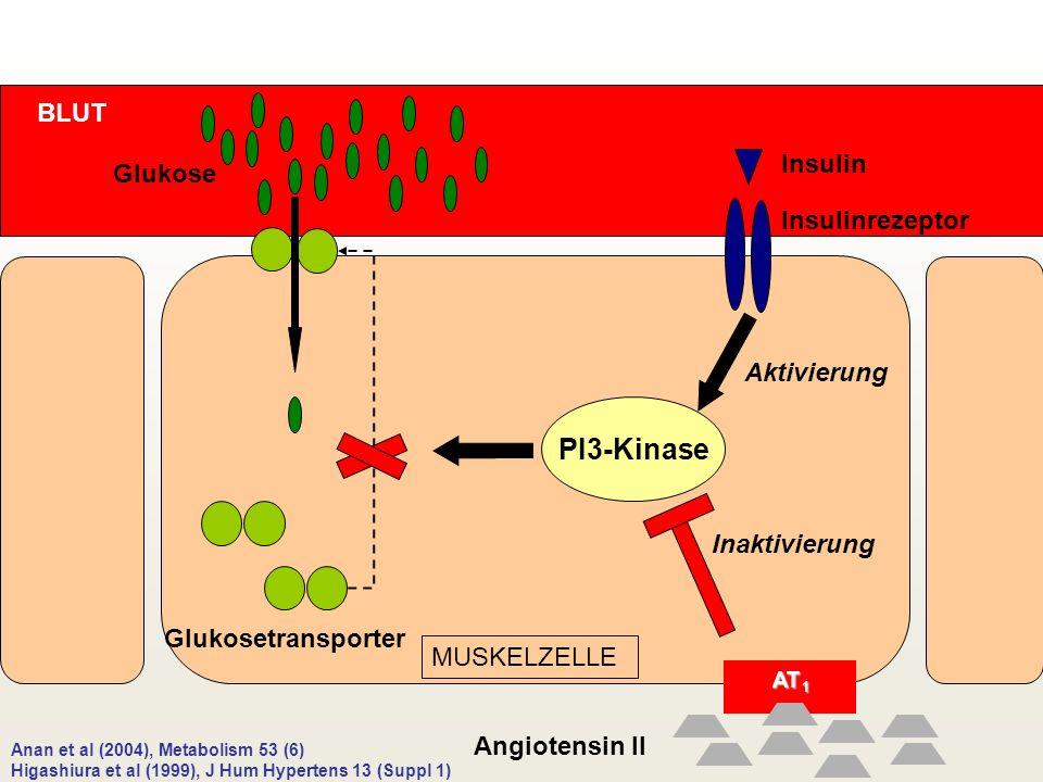 PI3-Kinase BLUT Insulin Glukose Insulinrezeptor Aktivierung