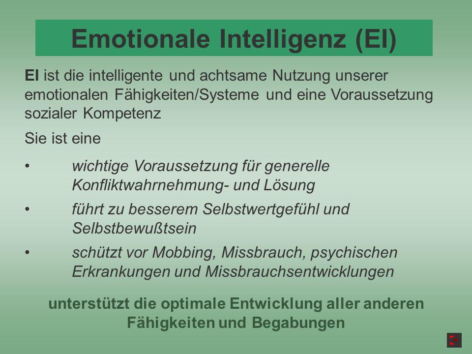 Emotionale Intelligenz (EI)