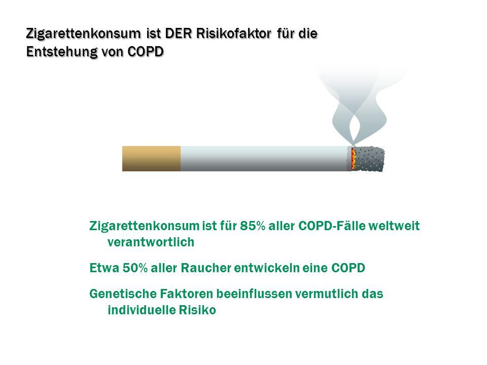 Zigarettenkonsum ist DER Risikofaktor für die Entstehung von COPD
